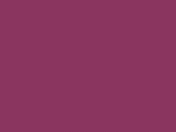 Fuchsia Brillant